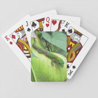 Blending In Playing Cards