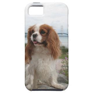 Blenheim Cavalier Mackinaw Bridge Michigan iPhone SE/5/5s Case