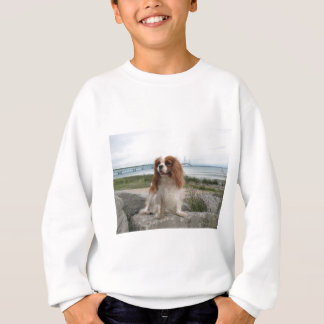 Blenheim Cavalier Mackinaw Bridge Michigan Sweatshirt