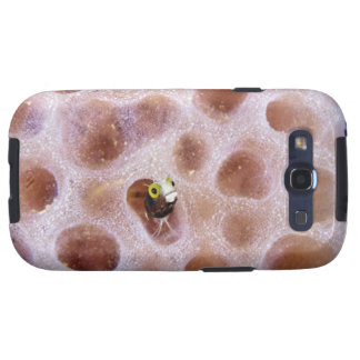 Blenny de Spinyhead (spinosa del acanthemblemaria) Galaxy S3 Protector