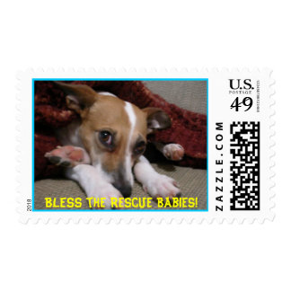 Bless the Rescue Babies! Postage Stamp