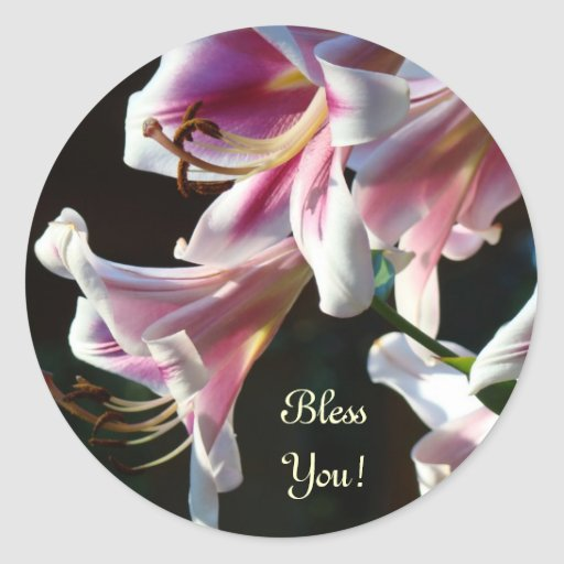 Bless You! stickers Pink White Lily Flowers Floral