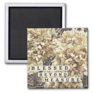 Blessed Beyond Measure Winter Flowers Magnet