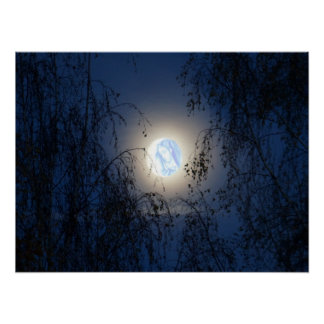Blessed Virgin Mary in the Moon Lite Forest Poster