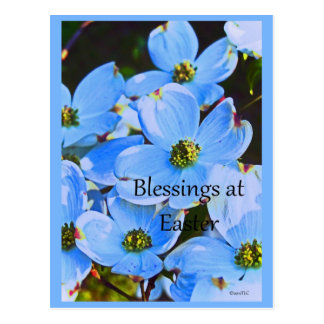 Blessings At Easter Postcard