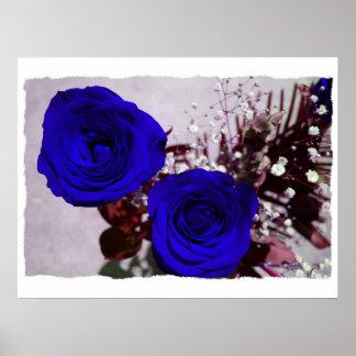 Bleu de dos rosas coloreado con la parte posterior impresiones
