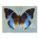 Bleu de Papillon Postales