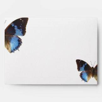 Bleu de Papillon Sobre