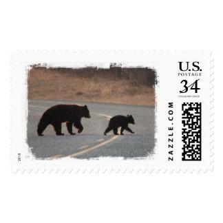 BLHI Black Bears on Highway Postage