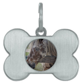 Blind Beauty Pet Tag