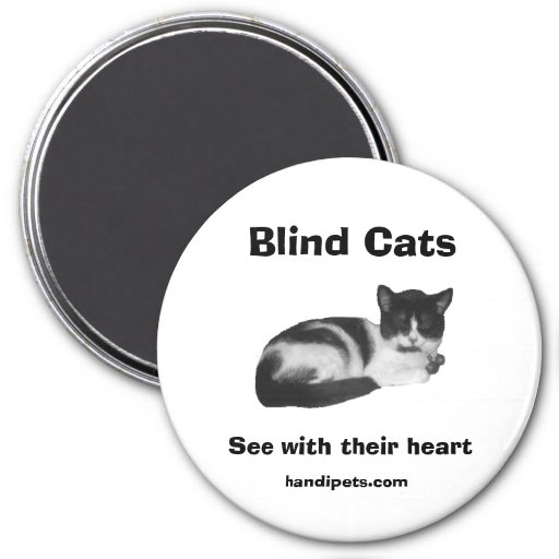 Blind Cat Magnet