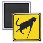 Blind Cats Crossing ! 2 Inch Square Magnet