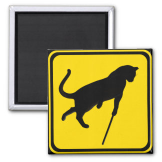 Blind Cats Crossing ! Magnets