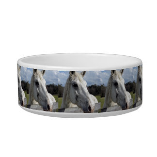 Blind Horse Bowl