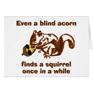 Blind Squirrel Card