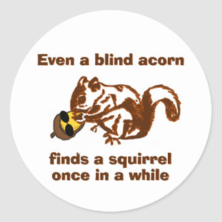Blind Squirrel Classic Round Sticker