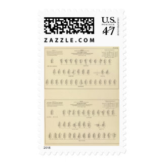 Blindness, Statistical US Lithograph Postage