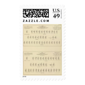 Blindness, Statistical US Lithograph Stamps