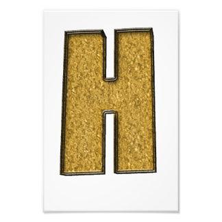 Bling Gold H Photo Art