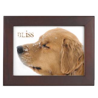 Bliss Golden Retriever Memory Box