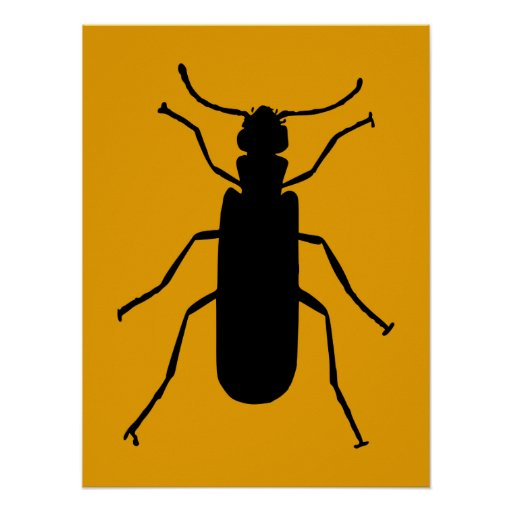 Blister Beetle Silhouette Poster