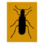 Blister Beetle Silhouette Print