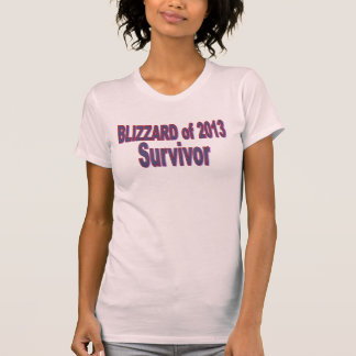Blizzard 2013 Survivor Shirt