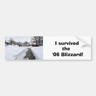 Blizzard Aftermath Bumper Sticker