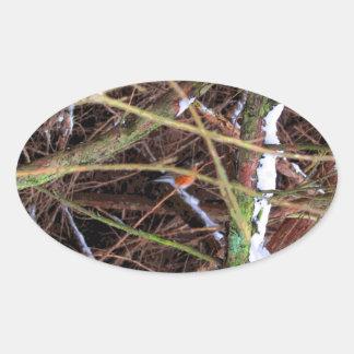Blizzard Bird CB Oval Sticker