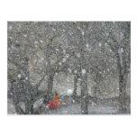 Blizzard forest postcard