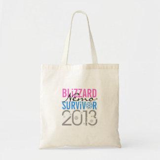Blizzard Nemo Survivor 2013 Bags 2