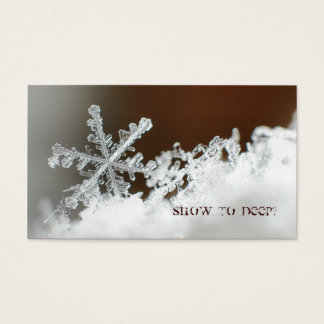 Blizzard of 2009 business card