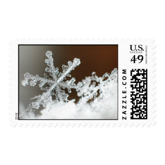 Blizzard of 2009 postage