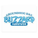 Blizzard Survivor Postcards