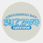 Blizzard Survivor Stickers