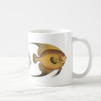Bloch angelfish Holocentrus Classic White Coffee Mug
