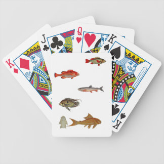 Bloch cards bicycle playing cards