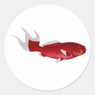 Bloch goldfish sticker