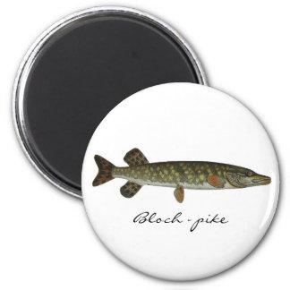Bloch - pike 2 inch round magnet