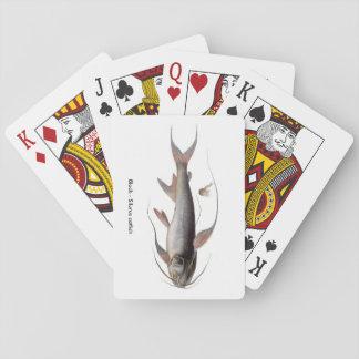 Bloch silurus catfish playing cards