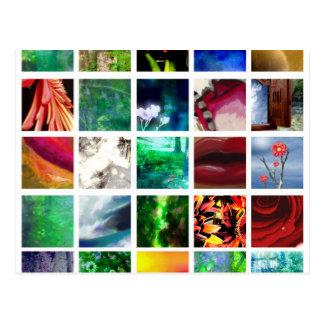 Blocks of Color Postcard