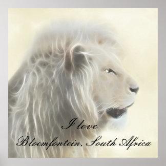 Bloemfontein South Africa Poster