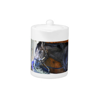 Blofeld - Todd Pletcher Roan Thoroughbred Teapot