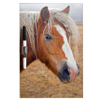 Blond Horse Dry Erase Board