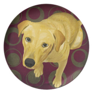 Blond Labrador Mix on burgndy and Sage Back Dinner Plate