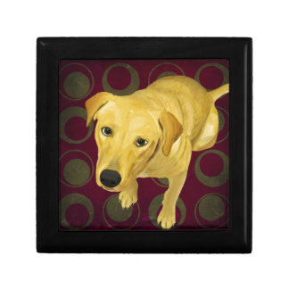 Blond Labrador Mix on burgndy and Sage Back Gift Box