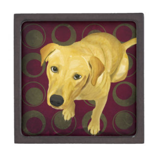 Blond Labrador Mix on burgndy and Sage Back Keepsake Box