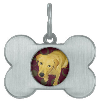 Blond Labrador Mix on burgndy and Sage Back Pet ID Tag