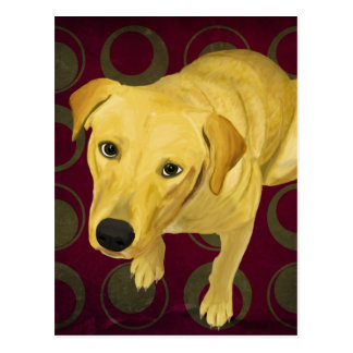 Blond Labrador Mix on burgndy and Sage Back Postcard