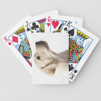 Blond Labrador puppy sticking out tongue Bicycle Playing Cards